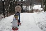 pulling sledge